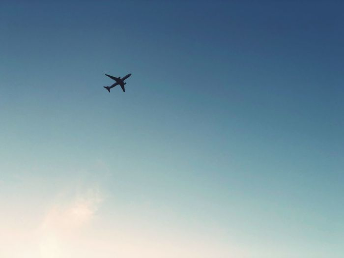 Airplane in clear skies Airplane In The Sky Flugzeug Air Vehicle Flying Low Angle View Airplane Mode Of Transportation Transportation Sky Blue Mid-air No People Travel on the move Silhouette Journey