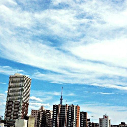 スカイツリーの先っちょ Photo Enjoying Life Sky