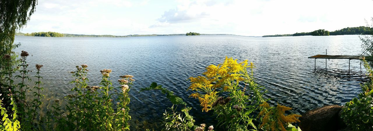 Water Lake Nature Day Outdoors Sky No People Tranquility Plant Growth Beauty In Nature Scenics Tree Flower Plönersee Panorama View Vacations Power In Nature Plöner See Panorama Panoramic Photography Beauty In Nature Plant Tranquility Tree