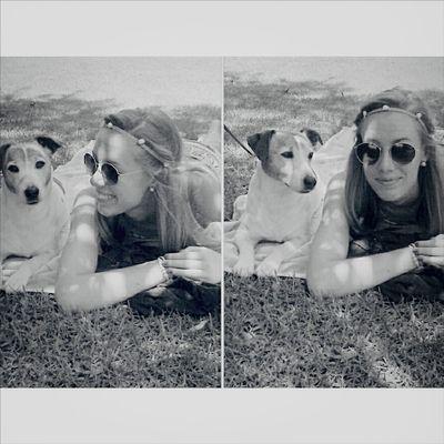 Dog Love Sunbathing Girl Cute