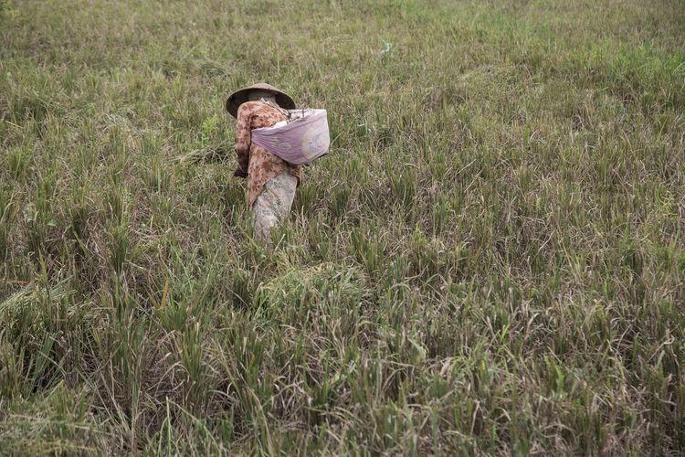 Rear view of farmer working on grassy field
