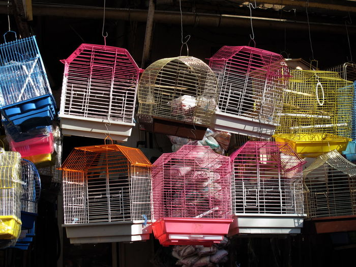 Colorful Bird cages Bird Cages Cage Casablanca Market Choice Day For Sale Hanging Market Multi Colored No People Outdoors Retail  Variation