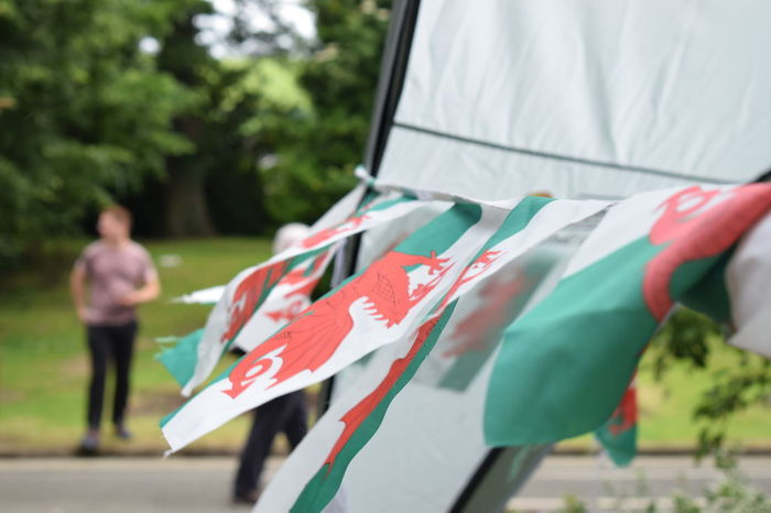 Welsh flags One Person Day Lifestyles Real People Leisure Activity Holding Casual Clothing Adult Focus On Foreground Men Outdoors Incidental People Clothing Selective Focus Nature Welsh Wales UK Welsh Flag Dragon Red Dragon Green And Red Wales Festival Marquee