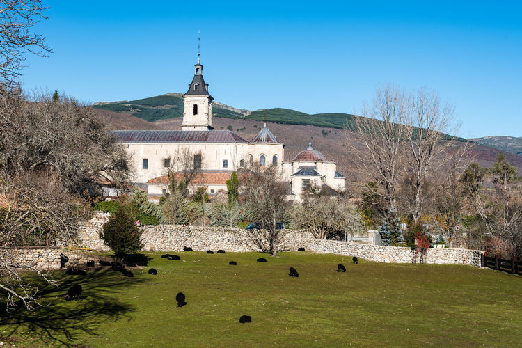 El Paular monastry in Madrid Architecture Building Exterior Built Structure Building Plant Tree Sky Religion Nature Place Of Worship Belief Clear Sky Blue Outdoors Church Rascafría Lozoya Madrid Mountain Landscape Monastry Spirituality Day Grass Land