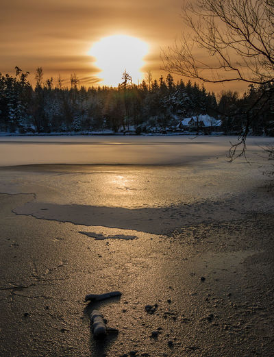 Sonnenaufgang bei Minus 12 Grad am Bergsee in Bad Säckingen Beauty In Nature Black Forest Cold Temperature Day Frozen Frozen Lake Nature No People Outdoors Schwarzwald Sky Sunrise Sunrise_sunsets_aroundworld Tree Wood