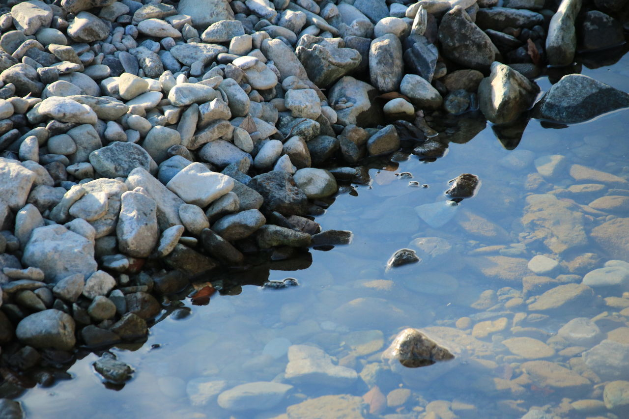 rock, solid, water, nature, no people, day, pebble, stone, rock - object, lake, stone - object, reflection, high angle view, waterfront, outdoors, animal wildlife, animals in the wild, beauty in nature, tranquility, shallow