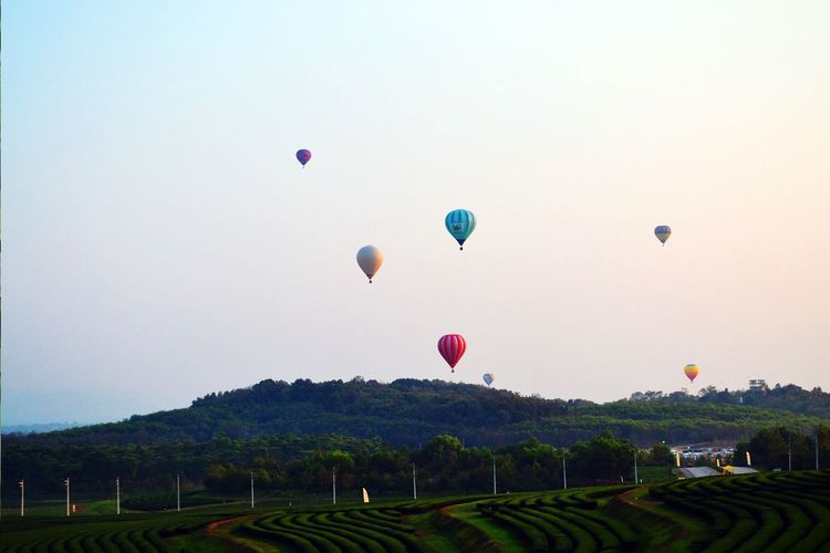 Hot Air Balloon Flying Mid-air Balloon Transportation Clear Sky Air Vehicle Ballooning Festival Sky Nature Outdoors No People Day Horizontal