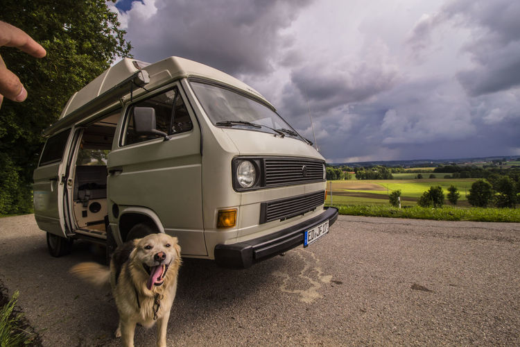 Bus-Dog Dog Pets Outdoors One Animal Cloud - Sky Rural Scene Sky Domestic Animals People Nature Hippielife Freedom Happiness Street Transportation Adventure Mode Of Transport Hippie ✌ Rear View Naturelovers Sweet Goodlife❤ Vanlife T3 Let's Go. Together.