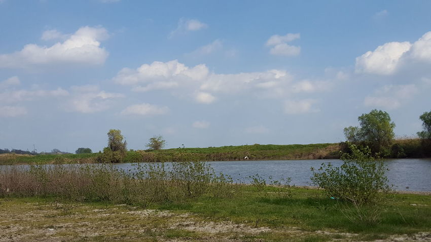 #beautiful #clouds #cotton #sunny #love #malulmuresului #nature_collection #EyeEmNaturelover #nature #RaulMures #river #romania #trees Finding New Frontiers
