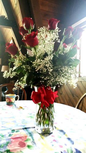 A Dozen Red Roses OMG!!!!  Amazing Man