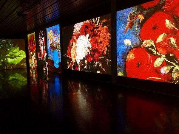 Van Gogh Museum USA Art Painting Exchange Student Amazing So Beautiful  VincentVanGogh Mostra