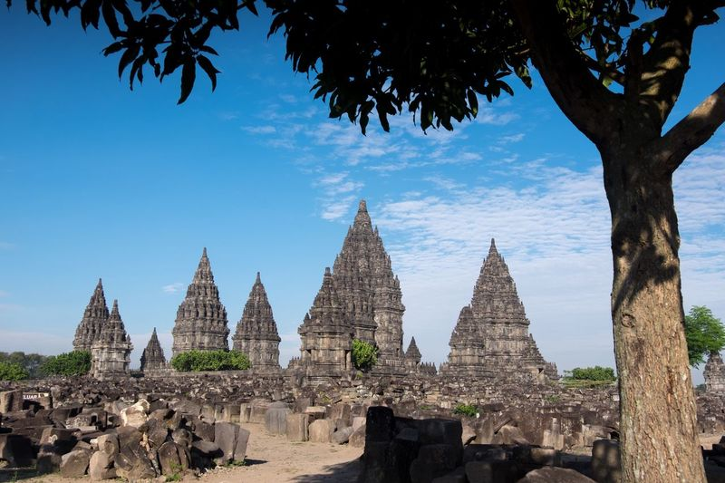 Prambanan temple Tree Architecture Sky Built Structure Building Building Exterior History Travel Destinations Plant Place Of Worship The Past Nature Belief Low Angle View Travel Tourism Outdoors No People Religion Blue