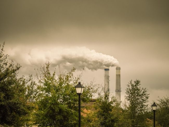 Industry Smoke Stack Pollution Factory Air Pollution Emitting Smoke - Physical Structure EyeEm Built Structure Environment Environmental Damage Architecture Chimney Cooling Tower Sky Tree Building Exterior No People Environmental Issues Fumes Day