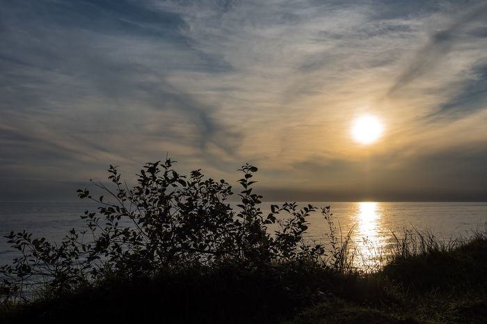 Sunset on the Baltic Sea coast. Baltic Sea Gespensterwald Nienhagen Germany Relaxing Sky And Clouds Beauty In Nature Cloud - Sky Coast Coastal Forest Day Evening Journey Landscape Nature No People Outdoors Shore Sundown Sunset Tourism Travel Destinations Vacation Water