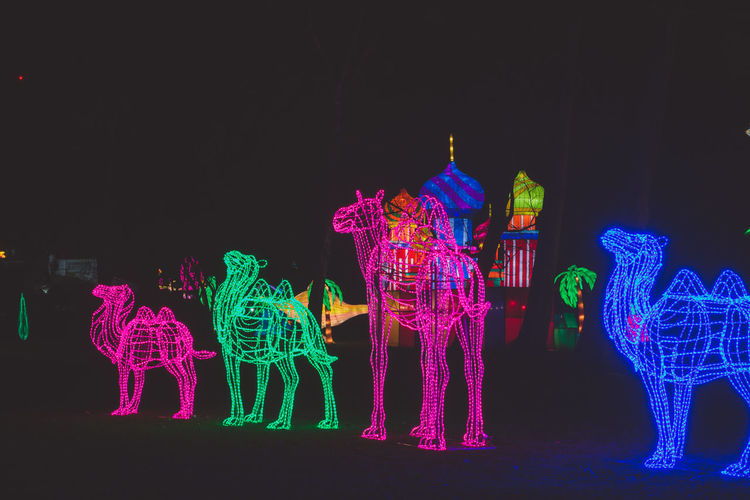 Chinese Lantern Festival - London - Chiswick House and Gardens Asian Culture Black Background Chinese Lantern Festival Chinese New Year Chiswick Cny Human Representation Kung Hei Fat Choi Lantern London Multi Colored Night Night Photography No People Outdoors Sculpture