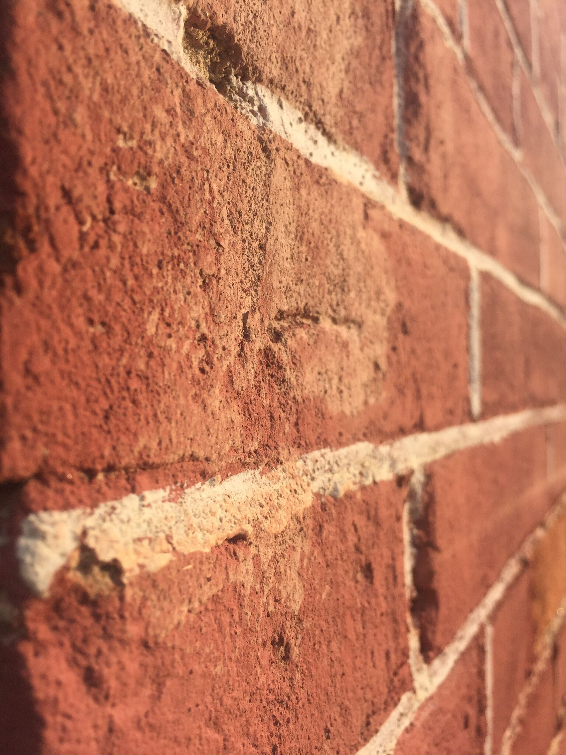 brick wall, architecture, built structure, wall - building feature, full frame, building exterior, textured, backgrounds, wall, pattern, brick, stone wall, close-up, no people, window, day, weathered, old, outdoors, sunlight