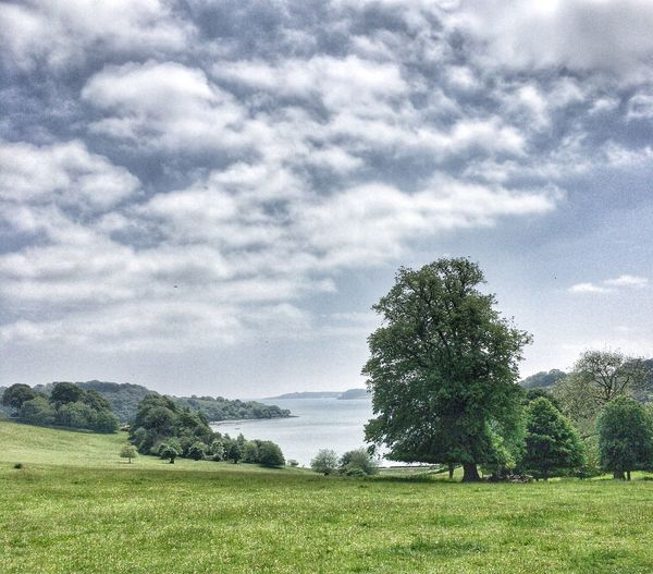 Trelissick House And Gardens. Cornwall View Carrick Roads Estuary