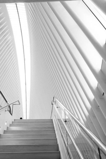 Tranquil Architecture Staircase Steps And Staircases Built Structure Pattern Railing Low Angle View Indoors  No People Ceiling Day Sunlight Wall - Building Feature Modern The Way Forward Direction Empty Moving Up Transportation New York New York City Design Pattern, Texture, Shape And Form Symmetry Urban Urban Skyline Urban Geometry White White Background White Color