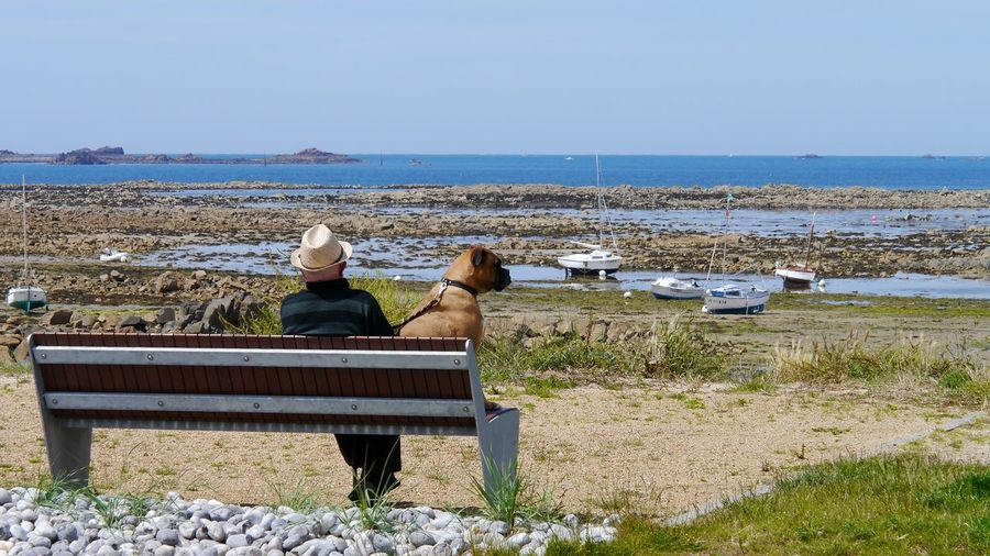 Man With Dog Sitting On Bench At Seaside