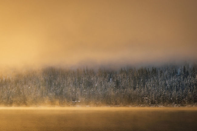 Winter sunrise at Donner Lake, California. California Donner Lake Snow ❄ Truckee  Beauty In Nature Cold Temperature Day Fog Foggy Grass Landscape Moody Nature No People Outdoors Scenics Sky Snow Sunrise Sunset Tranquil Scene Tranquility Tree Weather Winter