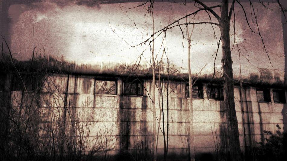 UrbanPoetry Secret Garden Abandonned Building