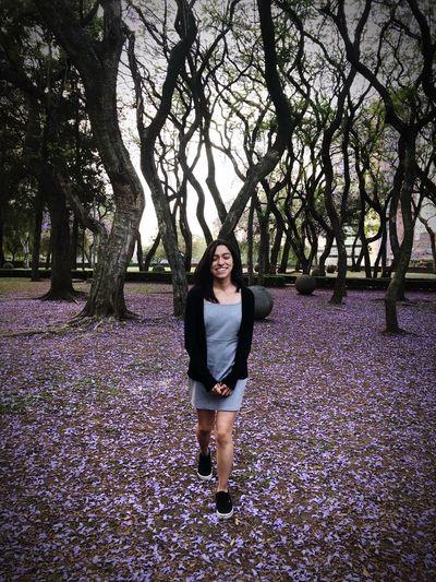 Purple Tree Lifestyles