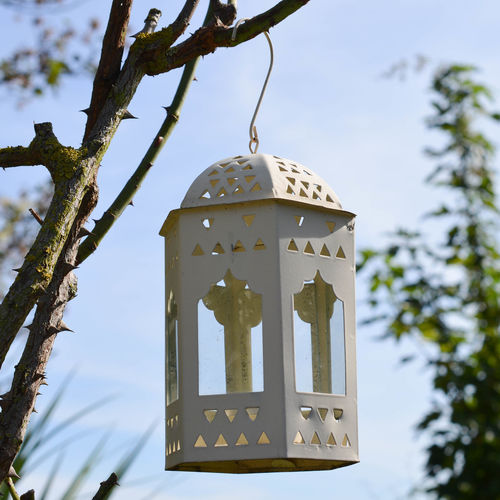 Arch Arches Architecture Bird Photography Bird Table Blue Branch Candle Clear Sky Cloud Day Hanging Hook Hung Lamp Low Angle View No People Podium Religious  Sky Sky And Clouds Spring Summer Tree Windows