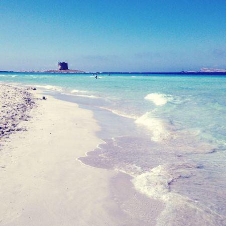 Sardegna Italy Stintino Beach Summer