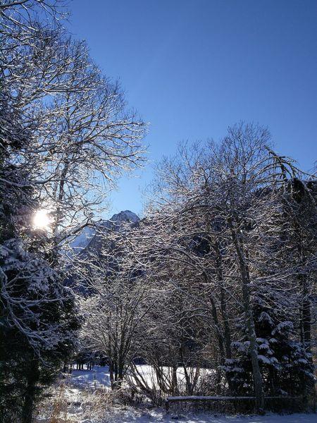 Snow Sun Mountains Italy Ponte Di Legno Adamelloski