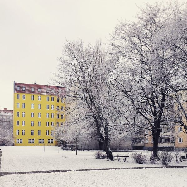 Architecture Architecture Architecturelovers Bare Tree Berlinwinter Day Nature Nature No People Outdoors Snow Snow Covered Snowing Treptow Tristesse White Tree Winter Winter Landscape Winter Trees Winter Wonderland Winter_collection Winterscapes Wintertime Winterwonderland Yellow House