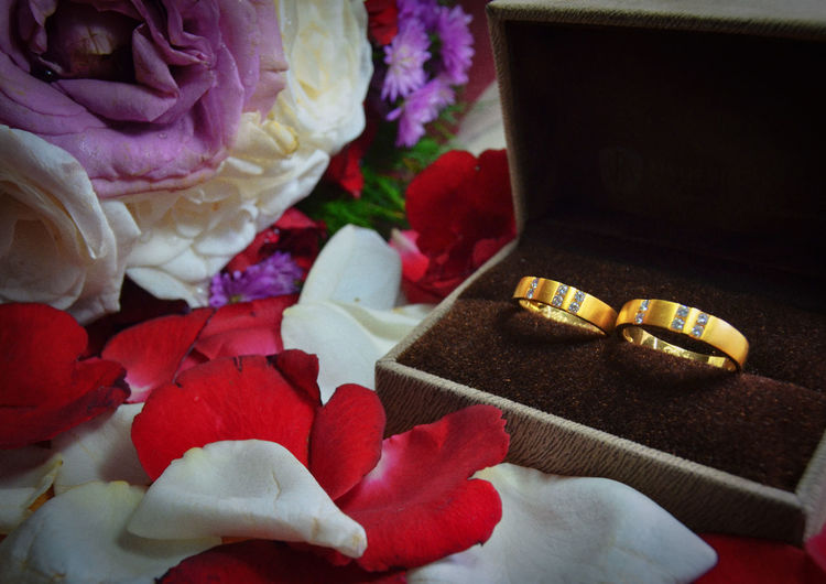 wedding rings Love Happiness Chruch Happy Jesus Katholic Wedding Wedding Ring Flower Red Close-up Colorful Botanical Jewelry Box Engagement Ring Diamond Ring Diamond - Gemstone Ruby Engagement