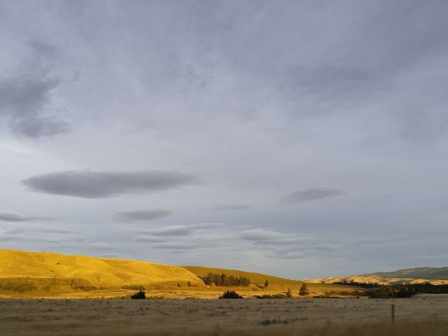 who needs filters when Nature Is Art 2 Sky Landscape Tranquility Nature Beauty In Nature No People Scenics Field Of Gold