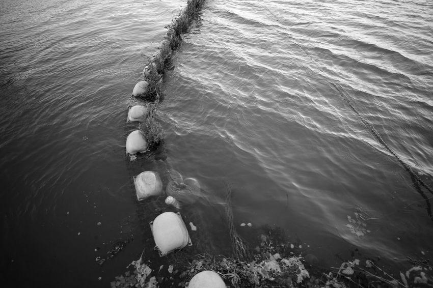 Muddy Water Voigtlander Lens Color-skopar 21mm F4 M9-p Leica Bw Blackandwhite Monochrome Swamp MuddyWater Muddy Muddy Waters EyeEm Selects Water Nautical Vessel High Angle View Wake - Water Rowing