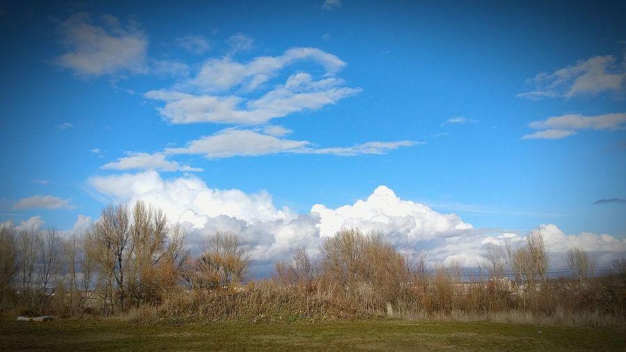 Nubes leonesas Sky Cloud - Sky Outdoors Landscape Nature No People LeonEsp  Nature