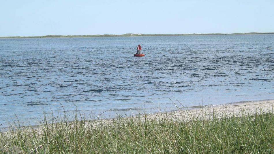 Capecod Chatham Sea Buoy Buoy Seagrass Atlantic Ocean Beachphotography Oceanphotography Sandy Beach Ocean View