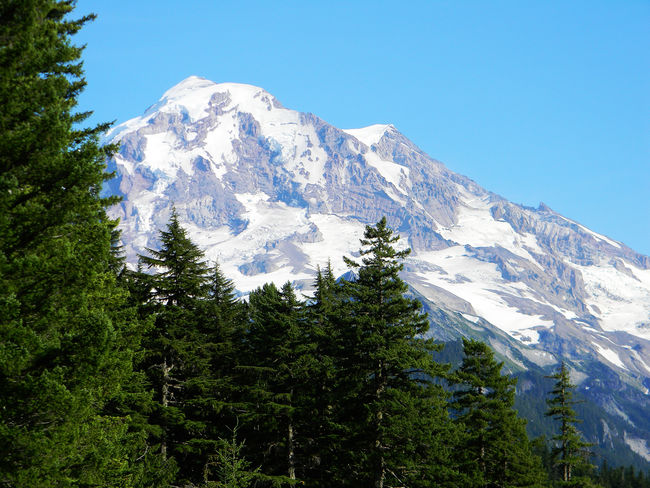 Beauty In Nature Majestic Mountain Mountains Mt. Rainier Nature Scenics Snowcapped Mountain Tranquil Scene Tranquility