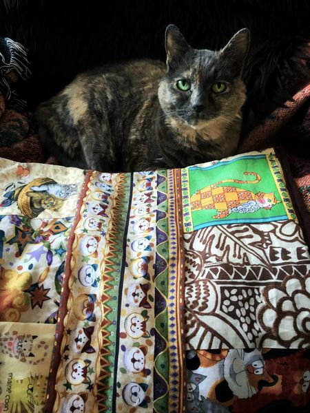 Miss Martha is happy with her little quilt pad, specially designed and made by my friend Kathie, for her carrier. Betty says it's too pretty for that and is going to put it on her favorite napping spot. Tadaa Friends Cats Of EyeEm Cats Tadaa Community Animals Portrait Cat Lovers Pets Corner Cute Pets Tadaakitties
