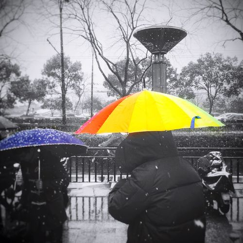Snow Rainbow rain