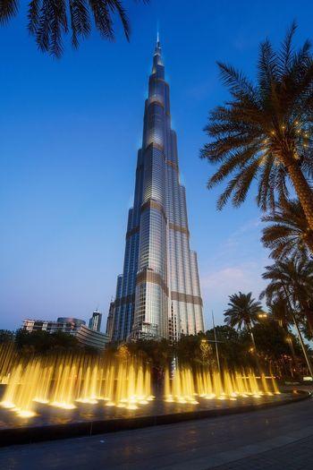 Dubai Burj Khalifa Downtown Dubai Architecture Tower Travel Destinations Palm Tree Low Angle View Skyscraper Illuminated No People Fountain EyeEmNewHere EyeEmNewHere