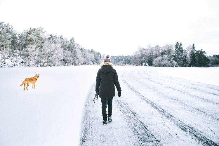 Rear View Of Woman And Dog Walking On Snow Covered Road Against Sky