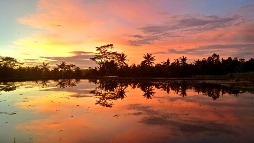 Bali Sunset Bali Sunset Jeanmart Joseph Jeanmart Verybalitrip The Great Outdoors - 2016 EyeEm Awards