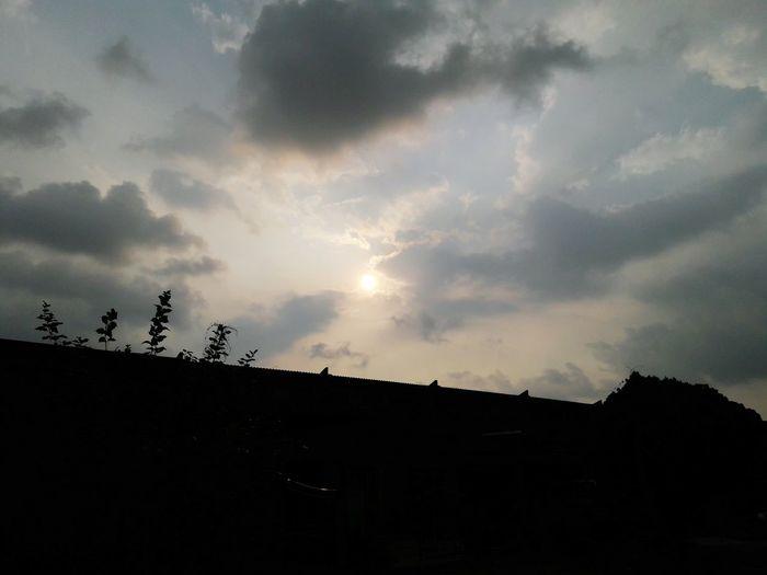 Sunny Day 🌞 First Eyeem Photo