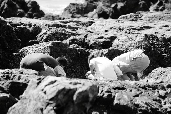 Intrigued  By The Seaside Black And White Playing Play Time Kidsphotography Kids Having Fun Young Wild And Free Children Photography What Is That?