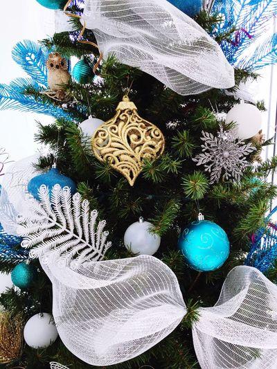 Christmas Decoration Celebration Home