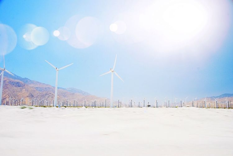 Windmills Palm Springs Alternative Energy Wind Turbine Wind Power Environmental Conservation Fuel And Power Generation Renewable Energy Windmill Outdoors No People Desert Landscape