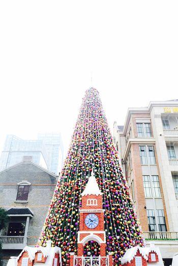 今年圣诞去哪儿过