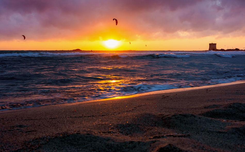 Sunset Sky Sea Water Scenics - Nature Land Beauty In Nature Beach Orange Color Cloud - Sky Sun Wave Nature Bird Horizon Horizon Over Water Motion Sport Vertebrate No People Outdoors