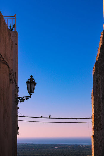 Sky Clear Sky Blue Street Light Nature Street Water No People Scenics - Nature Electricity  Sea Copy Space Day Beauty In Nature Outdoors Built Structure Low Angle View Light Electric Lamp Electrical Equipment Power Supply Sunset Puglia Italy