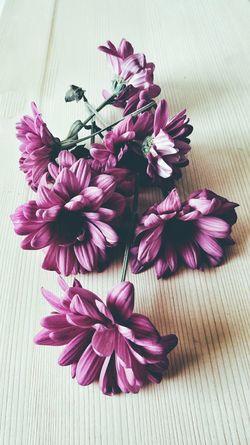 Flower Flower Head Pink Color Indoors  Wood Background Buquet Flower Not Fresh Moodyphotography Magenta Flower