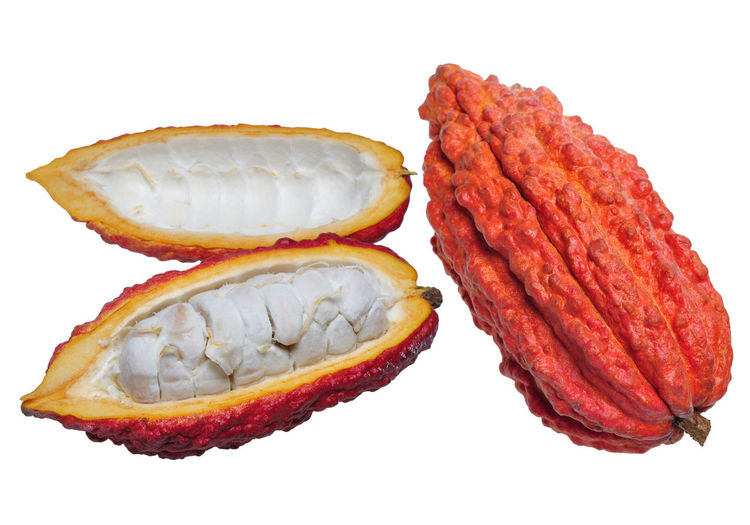 Cacao fruits Chocolate Agriculture Pod Nature Cacao Beans White Background Close-up Food And Drink